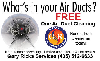 What's in your Air Ducts? Free, one air duct cleaning.